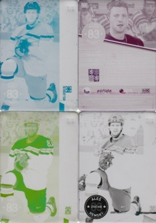 HEMSKÝ Aleš CZECH Ice Hockey Team 2016 č. 13 Printing Plate SET 1/1